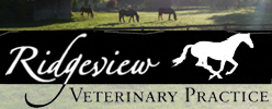 Ridgeview Veterinary Practice
